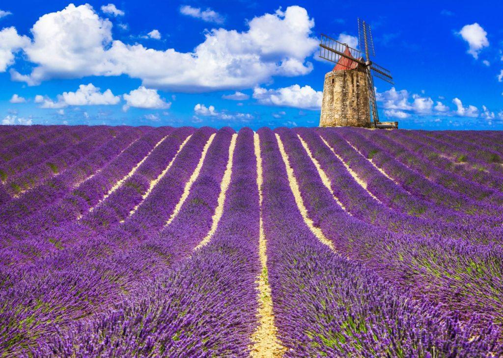 Ferienwohnungen in der Provence